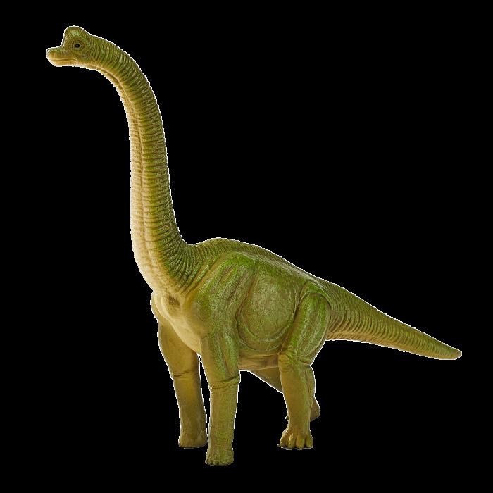 mô hình khủng long Brachiosaurus