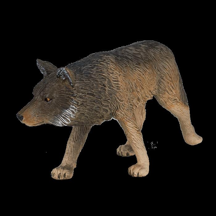 mô hình sói đi