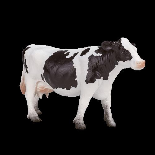 mô hình bò sữa