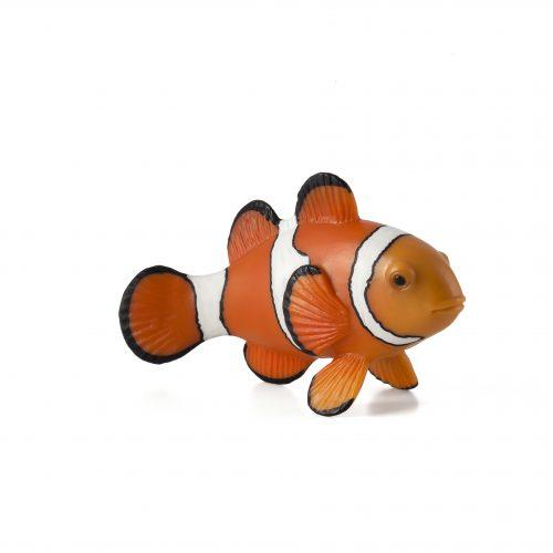 mô hình cá hề