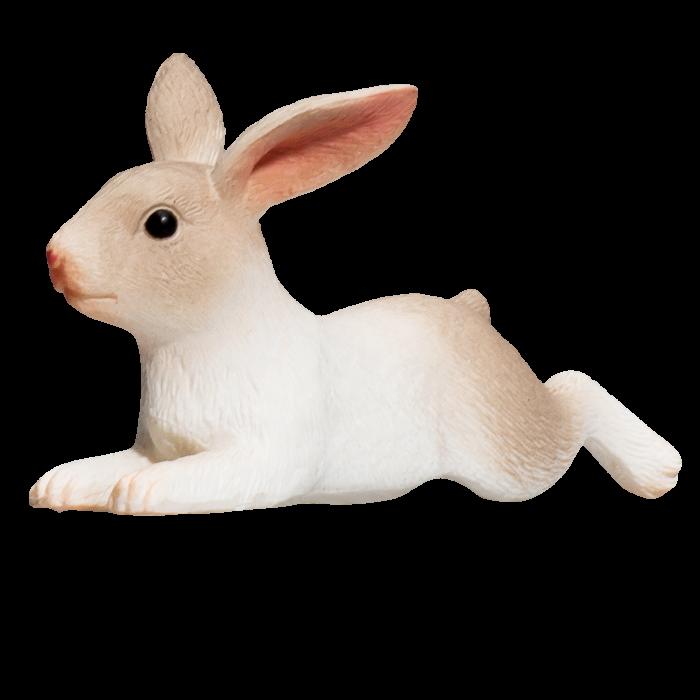 mô hình thỏ nằm