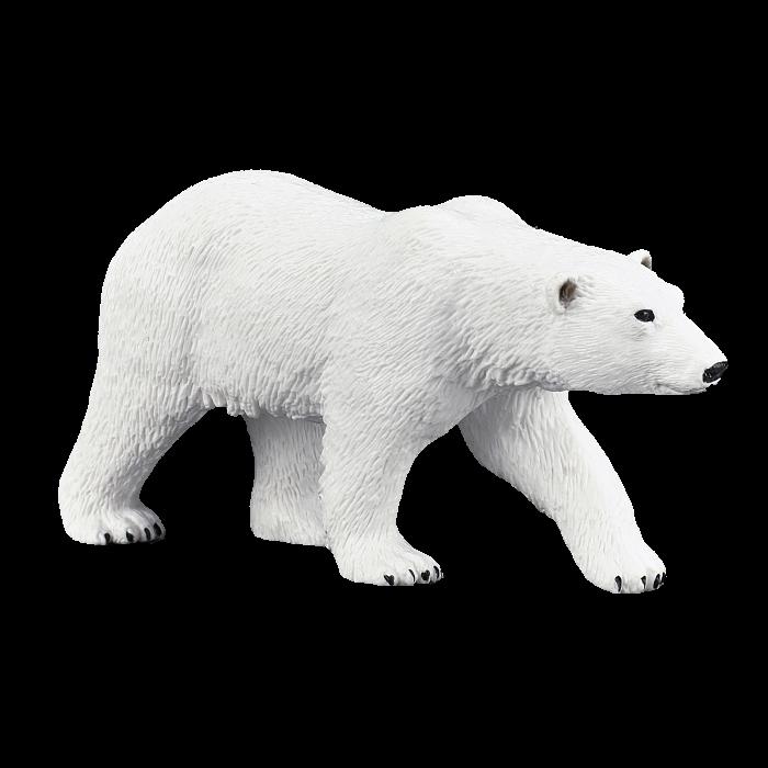mô hình gấu bắc cực