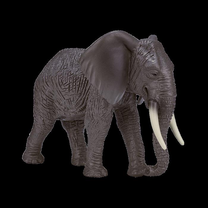 mô hình voi châu phi