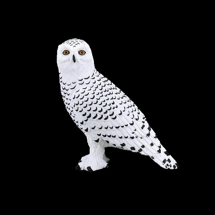 mô hình cú tuyết