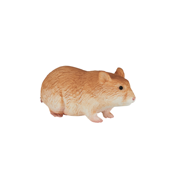 mô hình chuột hamster