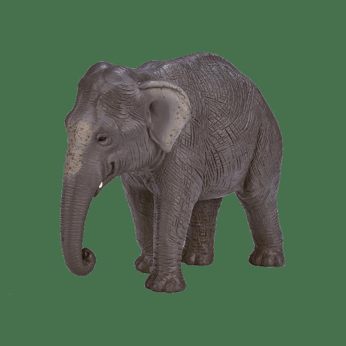 mô hình voi châu Á