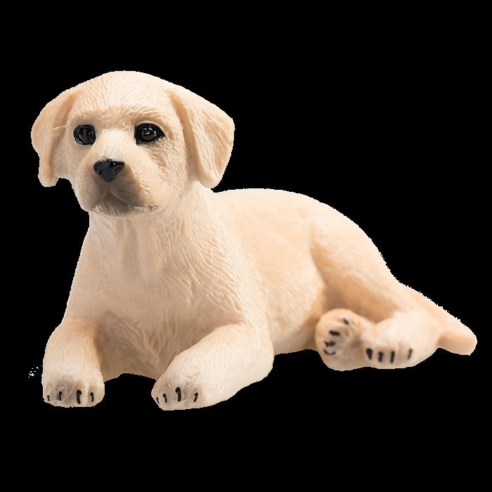mô hình chó Labrador con