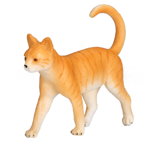 mô hình mèo
