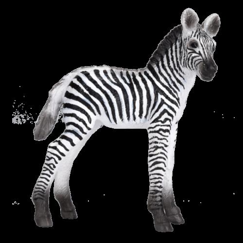 mô hình ngựa vằn con