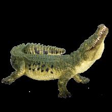 mô hình cá sấu crocodile