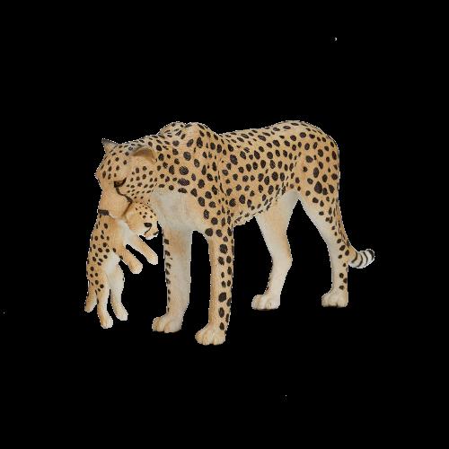 mô hình báo cheetah cái
