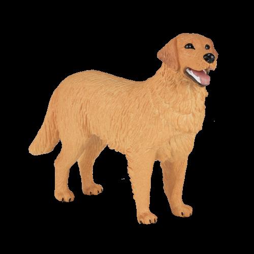 mô hình chó Golden Retriever