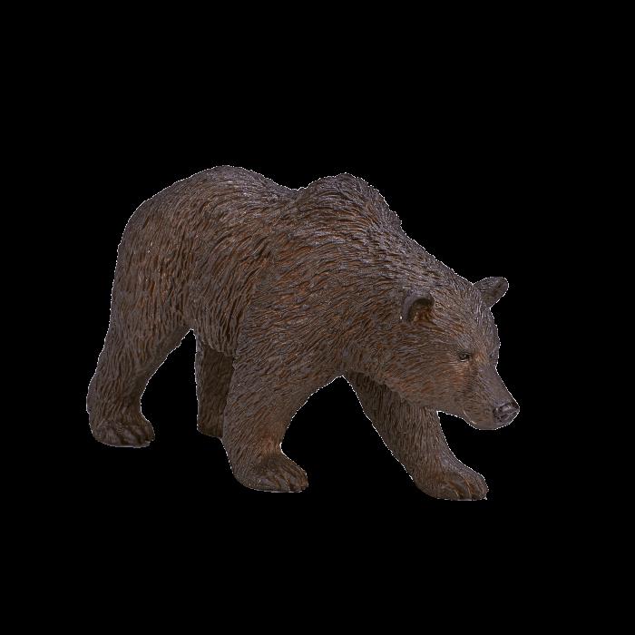 mô hình gấu xám