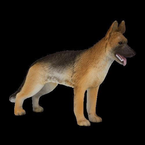 mô hình chó Becgie