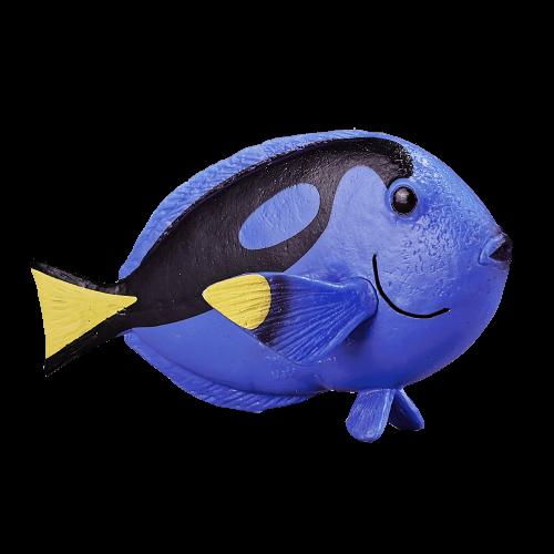 mô hình cá Blue Tang